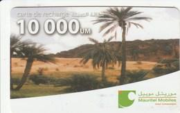 Mauritania - Mauritel - Palms In Landscape - Mauritania