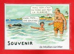 29-CPSM MOELAN SUR MER - Moëlan-sur-Mer