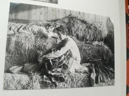 DODO SUR FOIN  GRANGE POUR ÉTUDIANTS INGÉNIEURS DE LOUVAIN - LA - NEUVE LEUVEN BRABANT FLAMAND BELGIQUE ALBUM  70 PHOTOS - Leuven