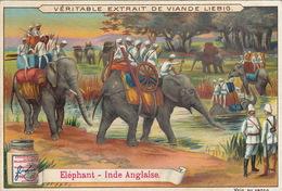 Chromo Liebig Transport Militaire éléphant Inde Anglaise - Liebig