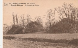 Grimde - Tirlemont  ; Les Tumulus , Grimde - Thienen : Grafheuvel Der Ouden (Tienen ) N° 29 - Tienen