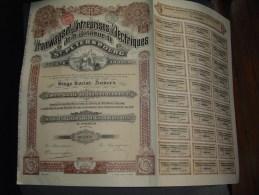 """Action Dividende""""Tramways Et Entreprises Electriques De St Petersbourg""""1912 Très Bon état,avec Tous Les Coupons - Spoorwegen En Trams"""