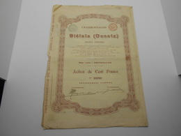 """Action De 100F"""" Charbonnages De Biélaïa """" Donetz Russie Russia 1900 Charbon Coal N°64780 - Russie"""