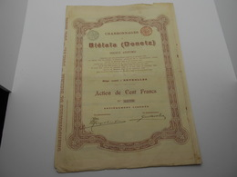 """Action De 100F"""" Charbonnages De Biélaïa """" Donetz Russie Russia 1900 Charbon Coal N°64779 - Russie"""