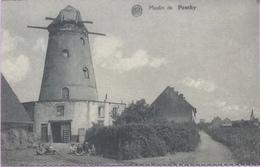 (2160) Vilvoorde - Vilvorde - Windmolen Bals - Moulin De Peuthy -  1920 - Vilvoorde