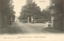 """Hoogboom - """"Hoogboomsche Steenweg"""" - H 426 - Kapellen"""