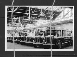 Reproduction Autobus à Identifier - Bus & Autocars