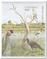 Guinea Bissau 1991, Postfris MNH, Birds - Guinea-Bissau