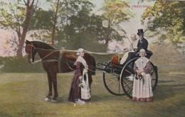 37253Groeten Uit Friesland (poststempel 1906) (onder Friesland Een Vouw) - Costumi