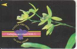 SINGAPORE(GPT) - Native Orchids Of Singapore/Coelogyne Mayeriana Rchb.f., CN : 67SIGB, Used - Singapore
