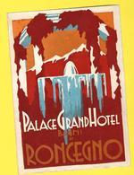 Étiquette Ancienne Pour Valise Du PALACE GRAND HOTEL, Bagni Di  RONCEGNO (Province De Trente Italie) - Etiquettes D'hotels