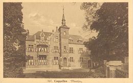 """Hoogboom - """"Plantijn"""" - Hoelen Nr. 161 - Kapellen"""