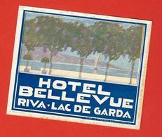 Très Originale étiquette Ancienne Pour Valise De L'HOTEL BELLE VUE à RIVA, Lac De GARDE, Italie - Etiquettes D'hotels