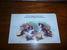 Carte Postale Fantaisie Illustrateur  Chat Chaton Kat Cat  Comique Series 1898 - Chats