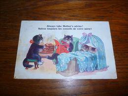 Carte Postale Fantaisie Illustrateur  Chat Chaton Kat Cat  Humanisé Lit Un Livre Au Petit  A Dog's Life Comique Series 1 - Chats