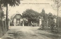 Cappellen-Hoogboom - Zicht Op Den Hoogboomschen Steenweg - Hoelen 3992 - 1908 - Kapellen
