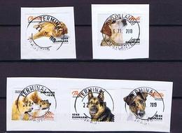 Denmark 2019;  Dogs:  Complete Set Of 5; Used On Fragments - Danemark