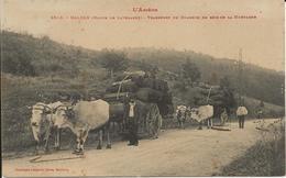 D  09  NALZEN  (Route De Lavelanet)  Transport Du Charbon De Bois De La Montagne - Autres Communes