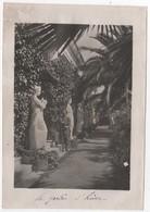 Photo Originale Guerre D'Orient GREECE GRECE CORFOU L'Achilléion Jardin Allée Des Muses - Guerre, Militaire