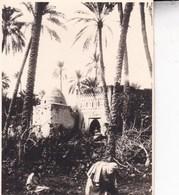 TOZEUR TUNISIE  Ambiance De Rue 1923   Photo Amateur Format Environ 5,5 X 7,5 Tirage Années '30 - Lugares