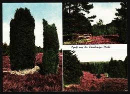 Lüneburger Heide  -  Mehrbild-Ansichtskarte Ca. 1969    (12212) - Lüneburger Heide