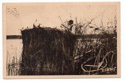 En GASCOGNE - Novembre, Sur Les Lacs, La Chasse Aux Canards Sauvages Et Aux Macreuses - Animée (I121) - Chasse
