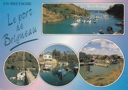 29  MOELAN Sur MER   Le Port De BRIGNEAU - Moëlan-sur-Mer