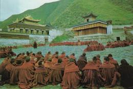 CARTE POSTALE ORIGINALE 10CM/15CM  : BUDDHIST ACTIVITIES ANIMEE TIBET - Tibet