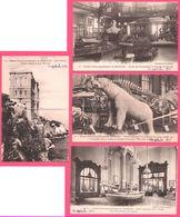 4 Cp Musée Océanographique Monaco - Ours Blanc, Baleinière Du Prince, Kayak, Pingouins, Cachalot - 1925 - Edit. GILETTA - Oceanografisch Museum