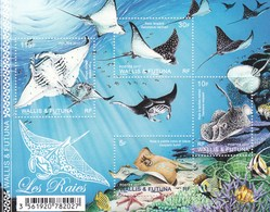 Wallis Et Futuna V F 873 MNH 2017 Raies - Fische