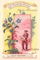 FRP-19-328 : CHOCOLAT POULAIN.  LES PLANTES UTILES. PLANTES MEDICINALES. LA BOURRACHE. JOUEUR DE VIELLE.. - Poulain
