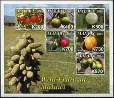 Malawi 2016. Wild Fruits Of Malawi (MNH OG) Miniature Sheet - Malawi (1964-...)