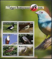 Malawi 2018. Indigenous Birds Of Malawi (MNH OG) Miniature Sheet - Malawi (1964-...)