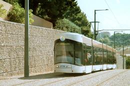 Marseille (13)  Tramway De Marseille - 29 Août 2011 - Ligne T1 - Rame En Direction De La Station Terminus : Noailles - Tramways