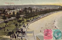 443/ Manley, Sydney 1906 - Sydney