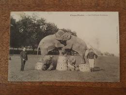 Cirque Pinder - Les Éléphants Acrobates - Photo Malherbe à Chantilly - Zirkus