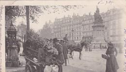 75 /PARIS / PLACE MONCEY  / BEAU PLAN FLEURISTE / TRES BELLE CARTE  / PRECURSEUR 1902 - Ambachten In Parijs