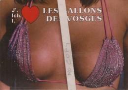 J'aime Les Ballons Des Vosges - Humor
