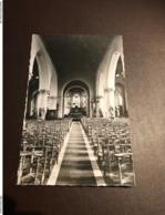 Pittem - Kerk Binnenzicht - Uitgave Alliet - Pittem