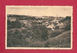 C.P. Thy-le-Château  =  Vue  Panoramique - Walcourt