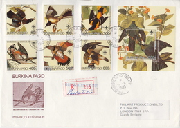 Burkina Faso Audubon Perforated And Imperforated Sets And SSs And 6 Deluxe SSs On 4 Used R Covers, Very Rare!!! - Birds