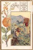 PIE-Z RO-19-3808 : CHOCOLAT POULAIN.  LES PLANTES UTILES. LE CAPRE. - Poulain