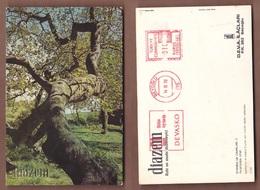 AC -  DIAZEM DEVA MEDICAL PLAIN TREES OF ISTANBUL CARD 14 OCTOBER 1970 - Sin Clasificación