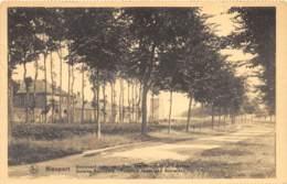 Nieuport - Boulevard Extérieur - Tour Des Templiers Et Caserne - Nieuwpoort