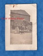 Photo Ancienne Snapshot - Nord De La France - Femme Victime De L'Exode Durant La Grande Guerre WW1 Attelage Ane Chien - Guerre, Militaire