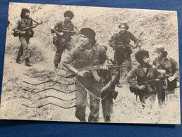 Postcard Circulated Nicaragua 1978, Guerrillas , Partisan - Nicaragua