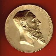 MEDAILLE BRONZE DORE LEOPOLD II ROI DES BELGES PROTECTEUR DE L EXPOSITION ANVERS 1885 GRAVEUR CHARLES WIENER - Royal / Of Nobility