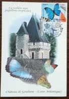 CM 2010 - YT N°4497 - NATURE / FAUNE / LES PAPILLONS - HAUTE GOULAINE - Cartas Máxima