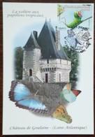 CM 2010 - YT N°4499 - NATURE / FAUNE / LES PAPILLONS - HAUTE GOULAINE - Cartas Máxima