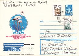 Cranes - Lettres & Documents